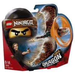 LEGO Ninjago Коул Мастер дракона